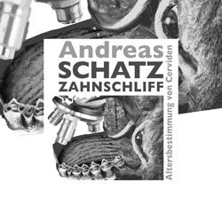Logo Andreas Schatz